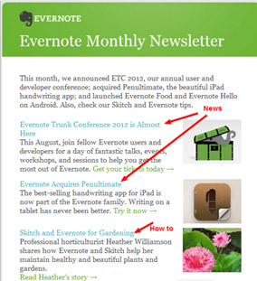 evernore newsletter, email marketing